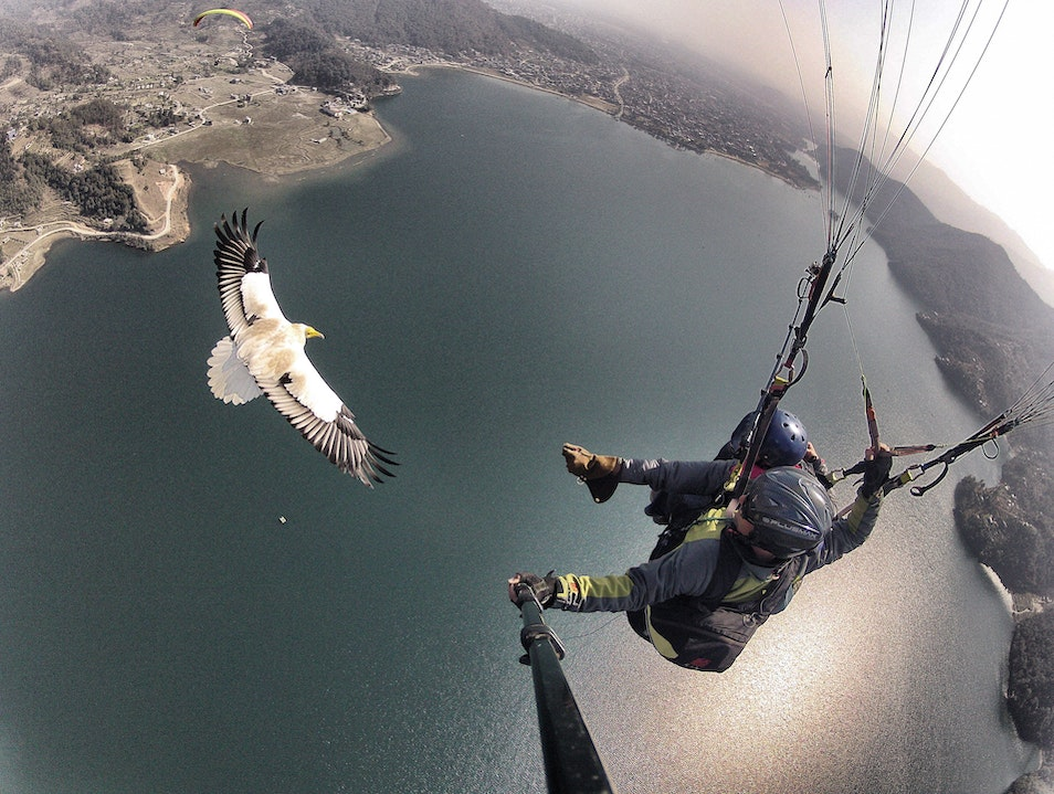 Get Out There: Parahawking in Nepal Rikaze  China