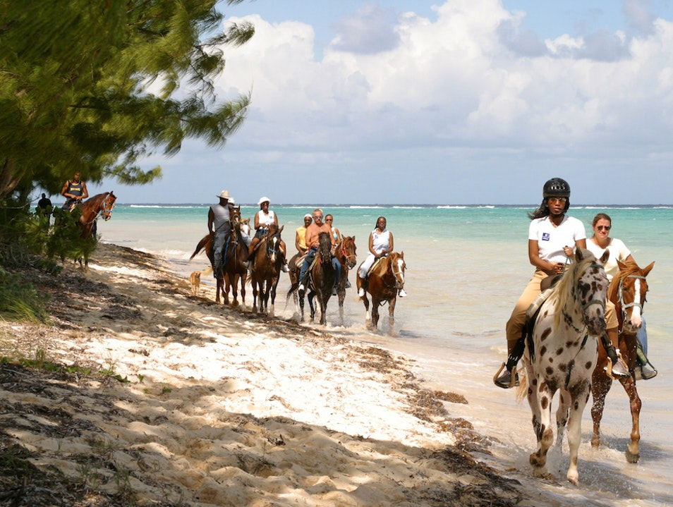 Barker's National Park: A Remote Cayman Islands Beach West Bay  Cayman Islands