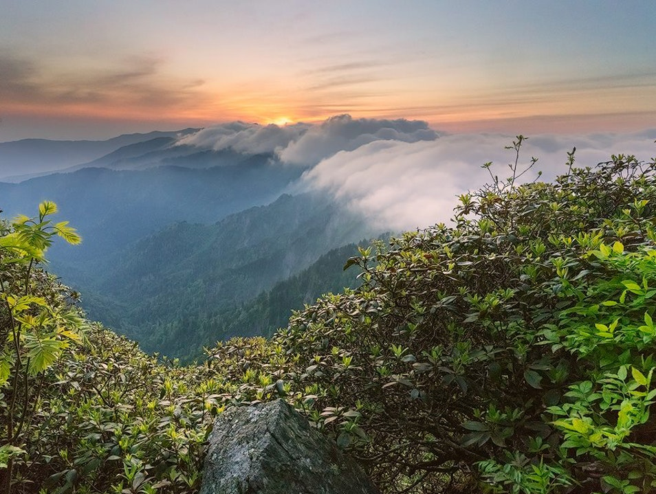 Great Smoky Mountains National Park   Tennessee United States
