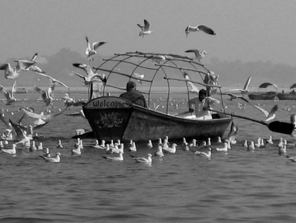 Take the Pilgrimage to the Sangam
