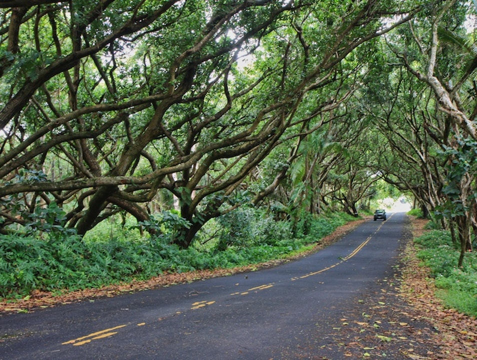 What Sunday Drives Are Made Of Pāhoa Hawaii United States