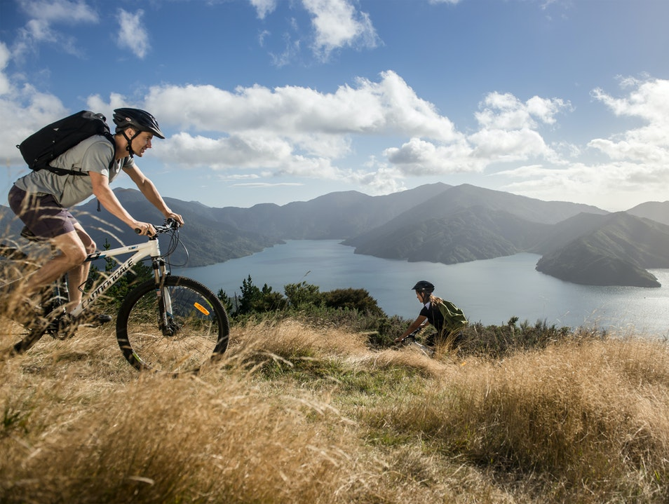 Queen Charlotte Track Picton  New Zealand