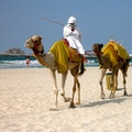 Jumeirah Beach Park Dubai  United Arab Emirates