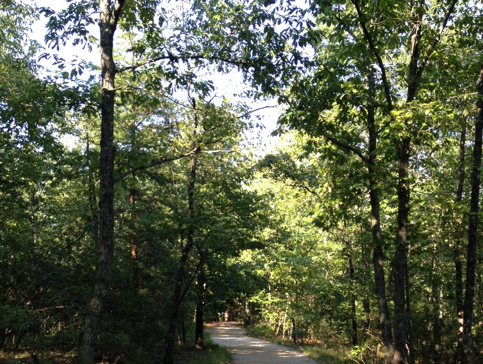 Hiking in Oak Mountain State Park Pelham Alabama United States