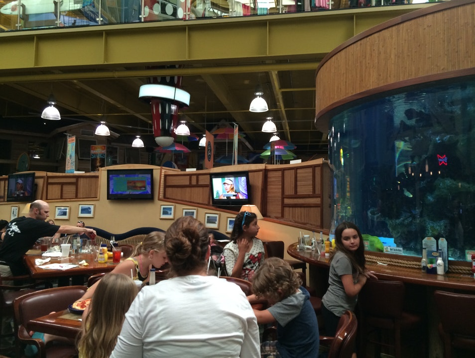 Delicious Food, Great Service, with an Aquarium View