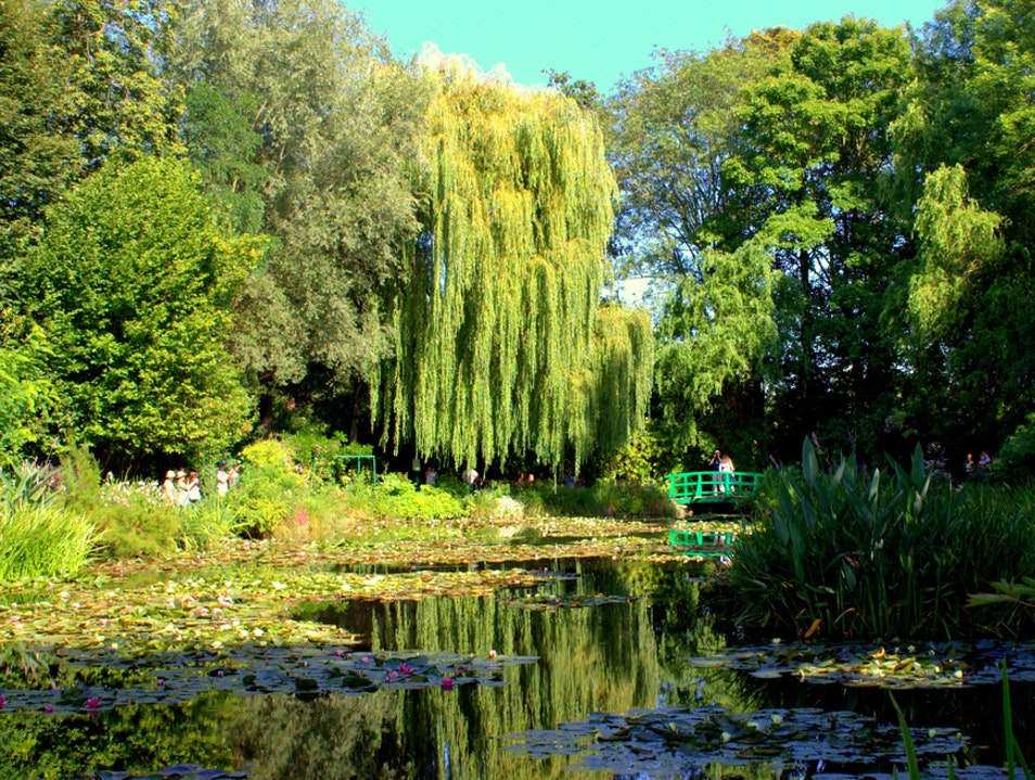 Standing In Monet's Paintings Giverny  France