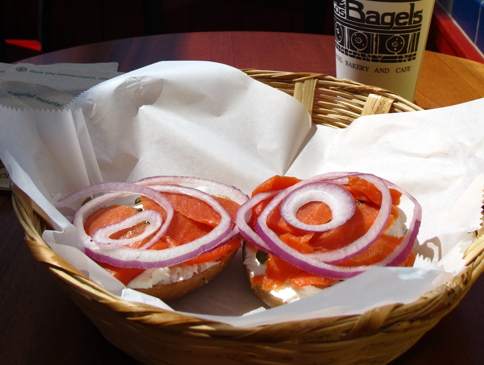 Los Bagels in Arcata Arcata California United States