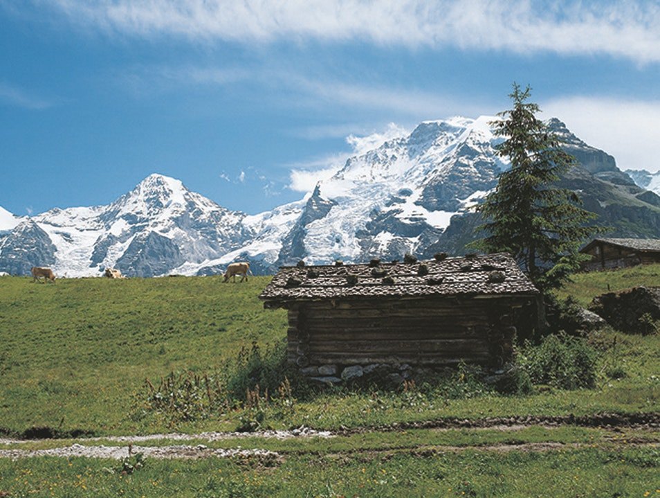 Grütschalp-to-Mürren Hike Lauterbrunnen  Switzerland