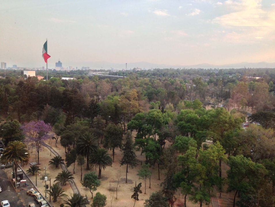 Bosque De Chapultepec Mexico City