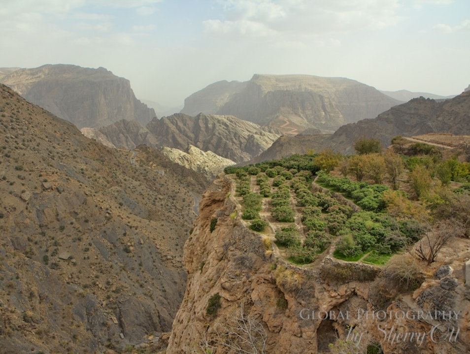 Trek and Smell the Roses in Oman