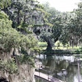 City Park New Orleans Louisiana United States