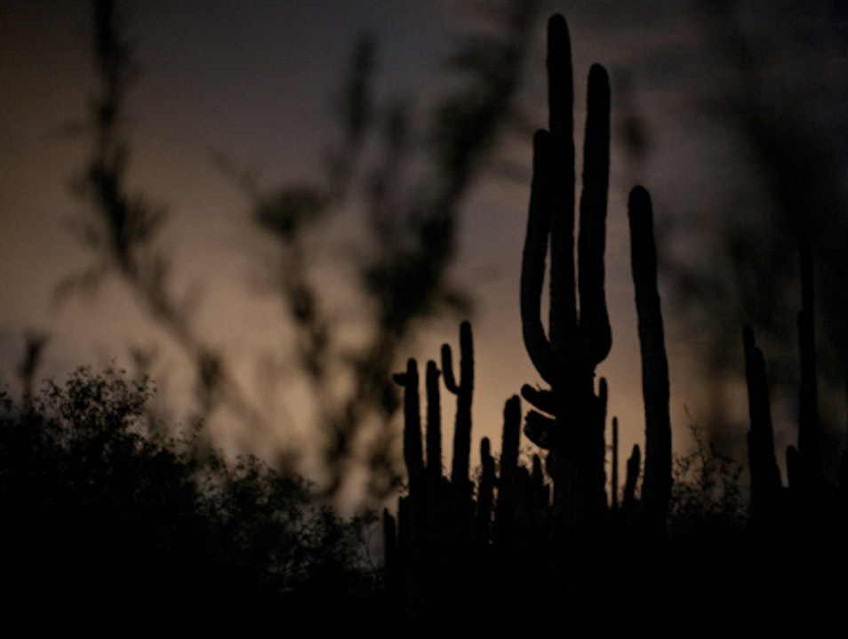 Best Kept Secret: Moonlight Hikes In The Desert Cave Creek Arizona United States