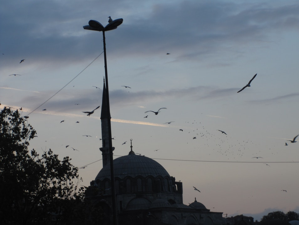 Mosque At Dusk Istanbul  Turkey