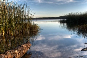 Lake Mineral Wells State Park & Trailway