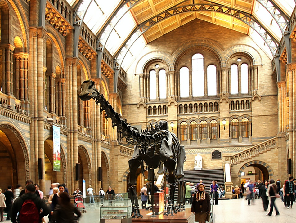The V&A and Natural History Museum