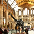 The V&A and Natural History Museum London  United Kingdom