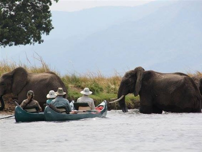 A Canoe Safari in Zimbabwe