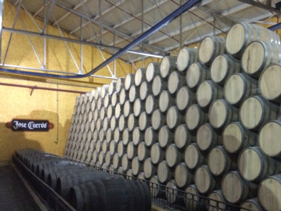 Tour Of Tequila Making