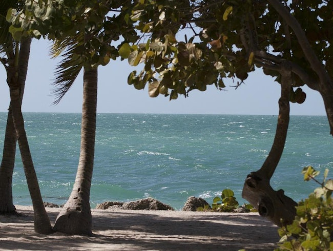 Visit Fort Zachary Taylor Historic State Park