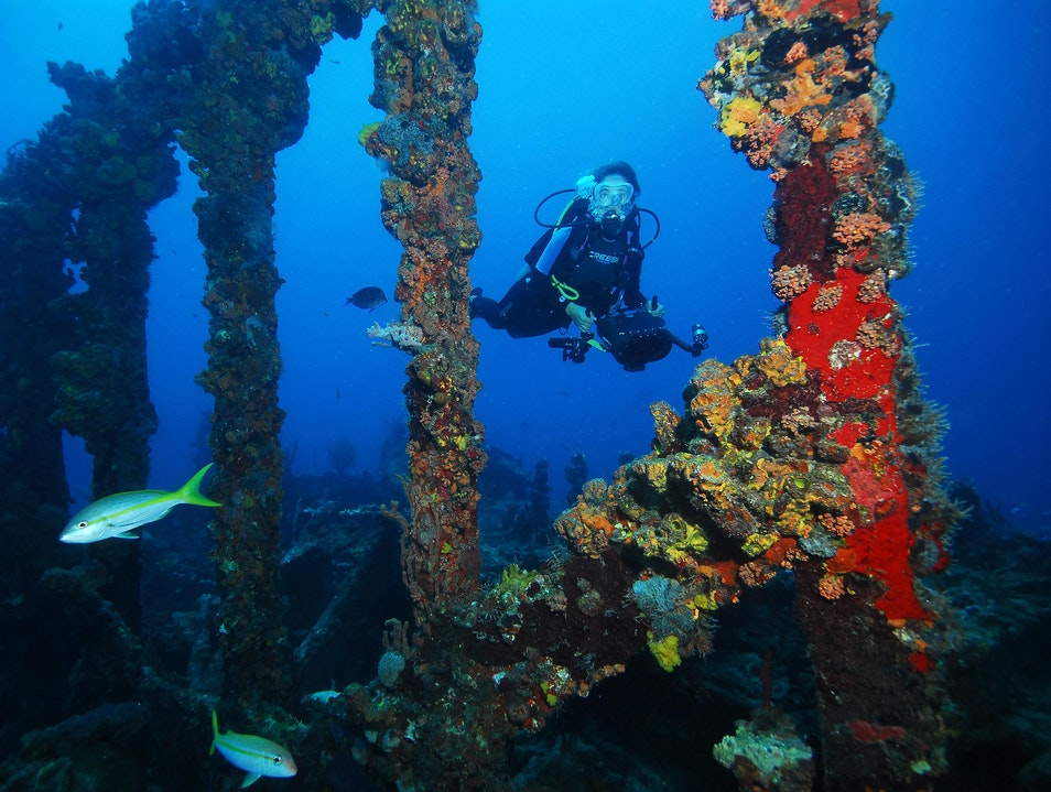 Explore the Wreck of the Rhone  Leonards  British Virgin Islands