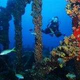 Explore the Wreck of the Rhone