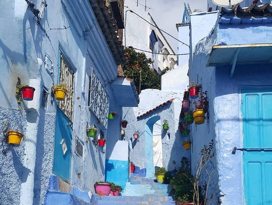 Day trip to the blue city of chefchaouen from fes Fes  Morocco