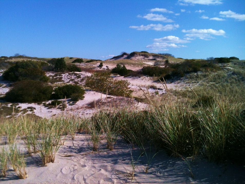 Sandwiched between the Dunes Sandwich Massachusetts United States