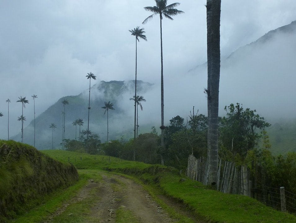 A Challenging Hike in Colombia's Coffee Triangle