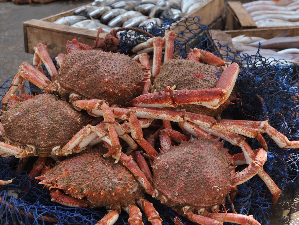 Red is in the Crabs at Essaouira