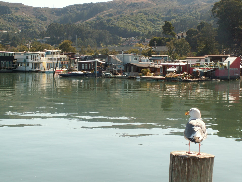House Boat Tours in September Sausalito California United States