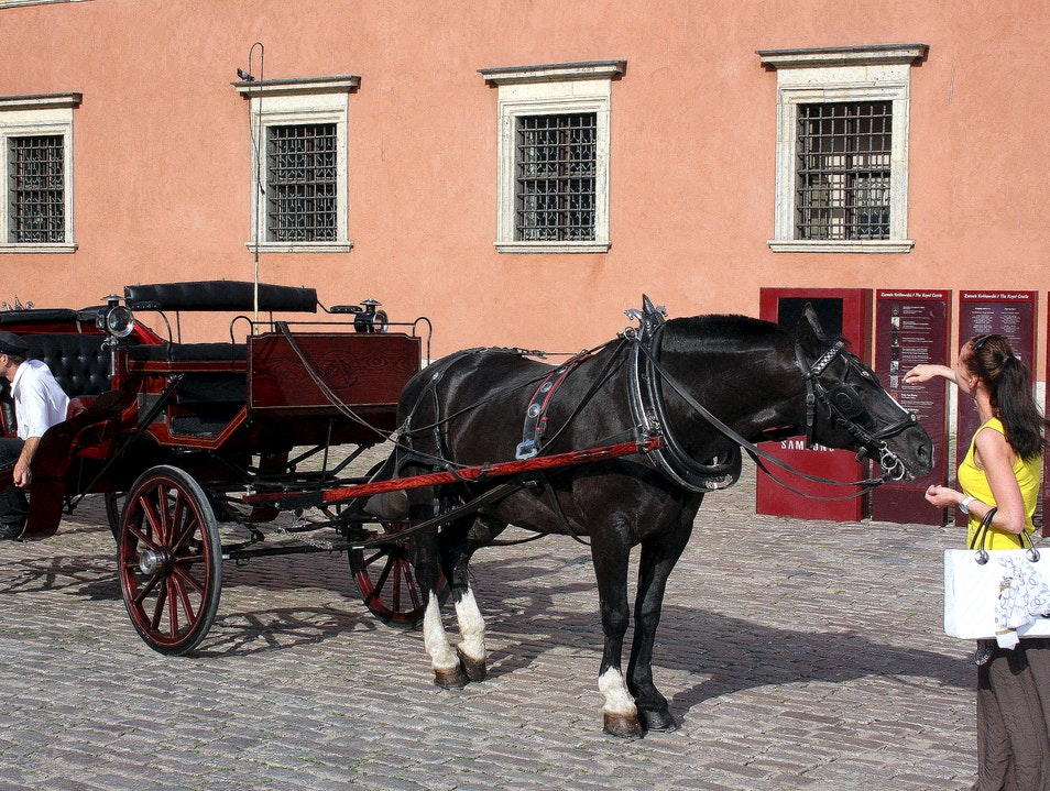 A Horse-Drawn Carriage in the Old Town Warsaw  Poland