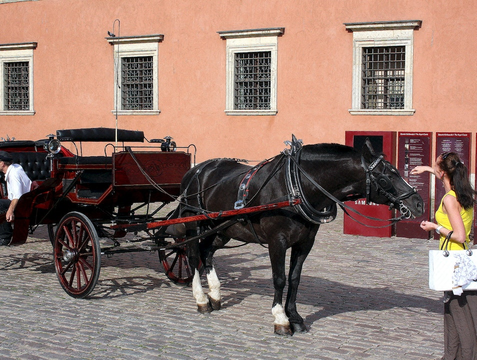 A Horse-Drawn Carriage in the Old Town