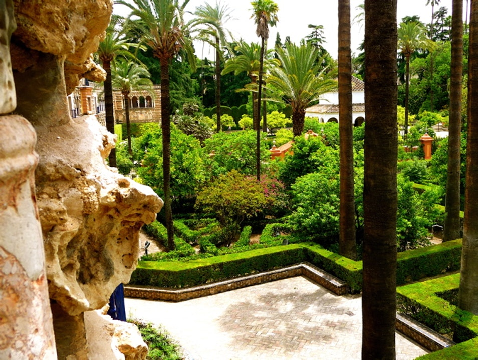 The beautiful sculpted gardens of the Alcázar Seville  Spain