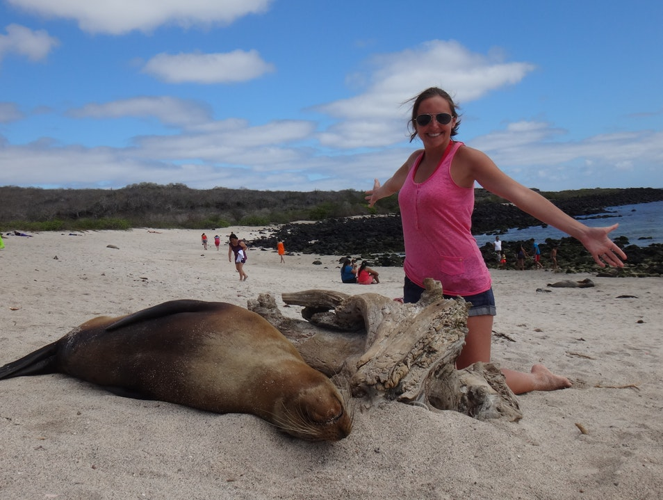 Up close and personal with the sea lions of Galapagos Galápagos Islands  Ecuador