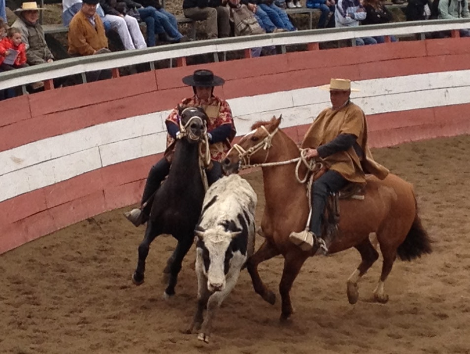 Chile's National Sport: Rodeo Rancagua  Chile