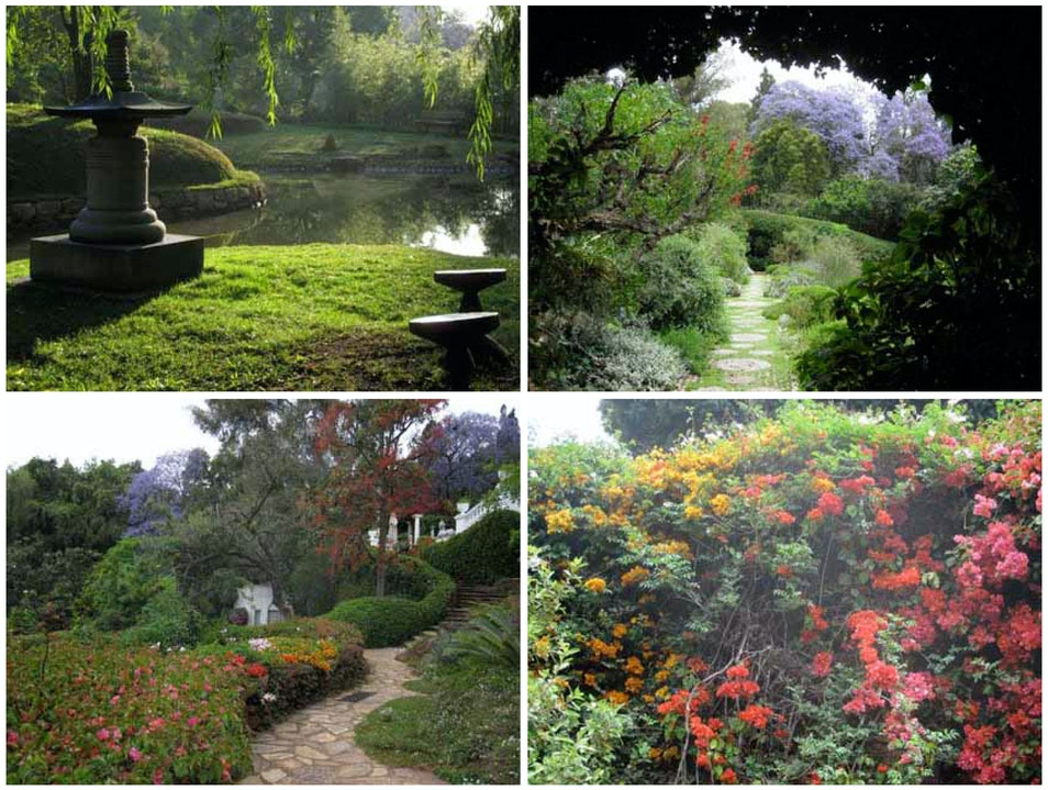 Breakout Activity #10: Brenthurst Garden Tour Brakpan  South Africa
