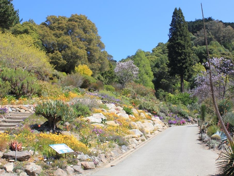 Save Big on Admissions to Botanical Garden & Museums in Bay Area…and Across U.S.