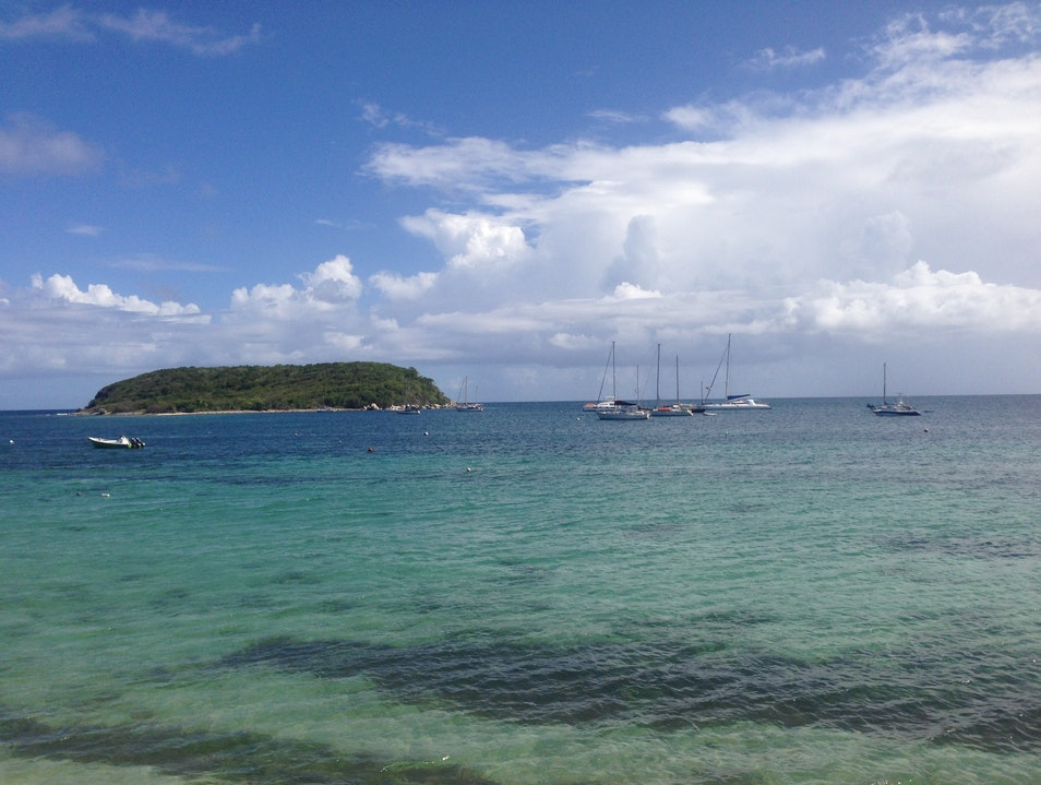 Esparanza: Hidden Gem in the Caribbean Vieques  Puerto Rico