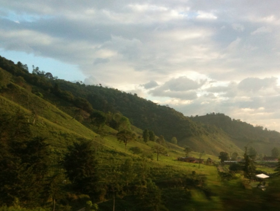 View from the bus in Zona Cafeteria Salento  Colombia