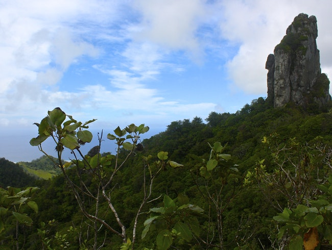 Cross Island hike on Rarotonga