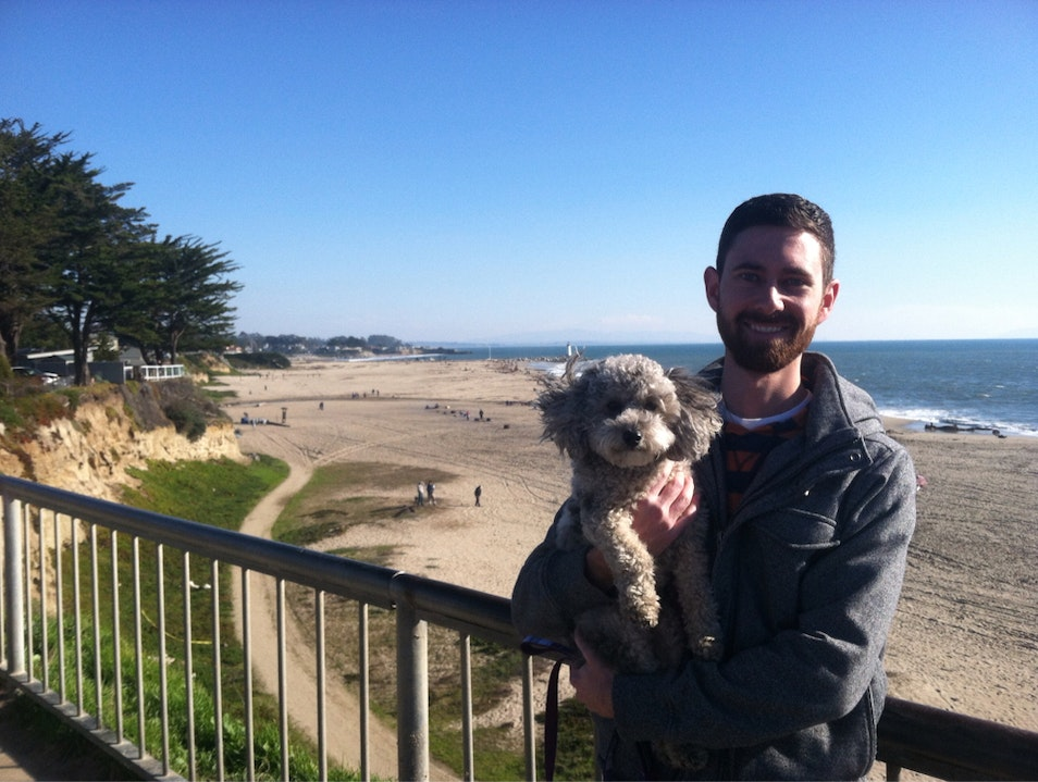 Dog Friendly-ish Beach Santa Cruz California United States