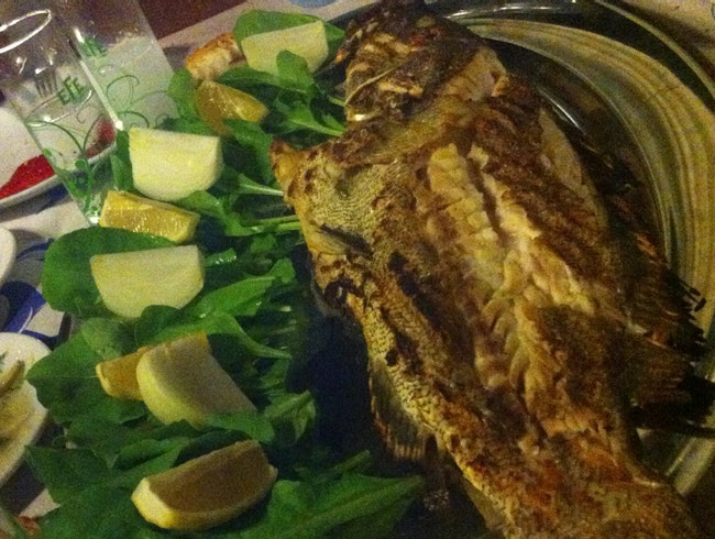 Raki And Fish