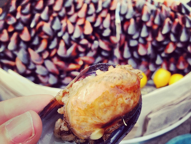 Steamed & Stuffed Mussels in Istanbul