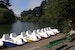 Paddle About Stow Lake in Golden Gate Park San Francisco California United States