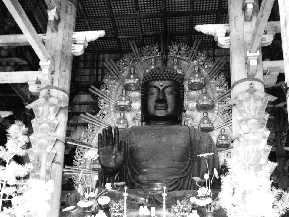 Giant Buddha at Deep Park in Japan