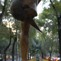 Public Art on Paseo de la Reforma Mexico City  Mexico