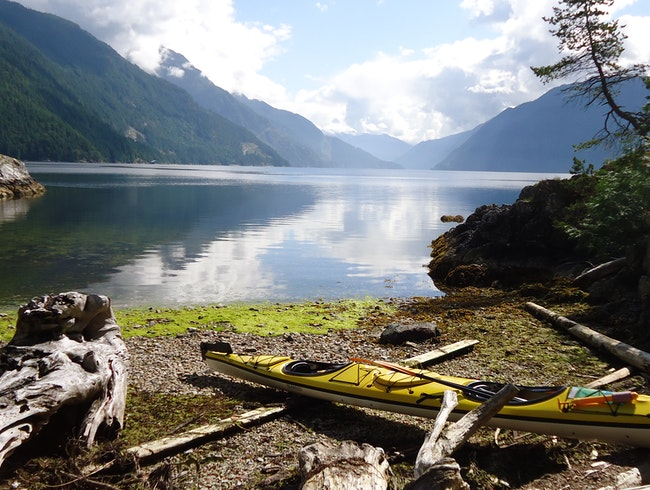 Kayaking With Seals On BC's Sunshine Coast