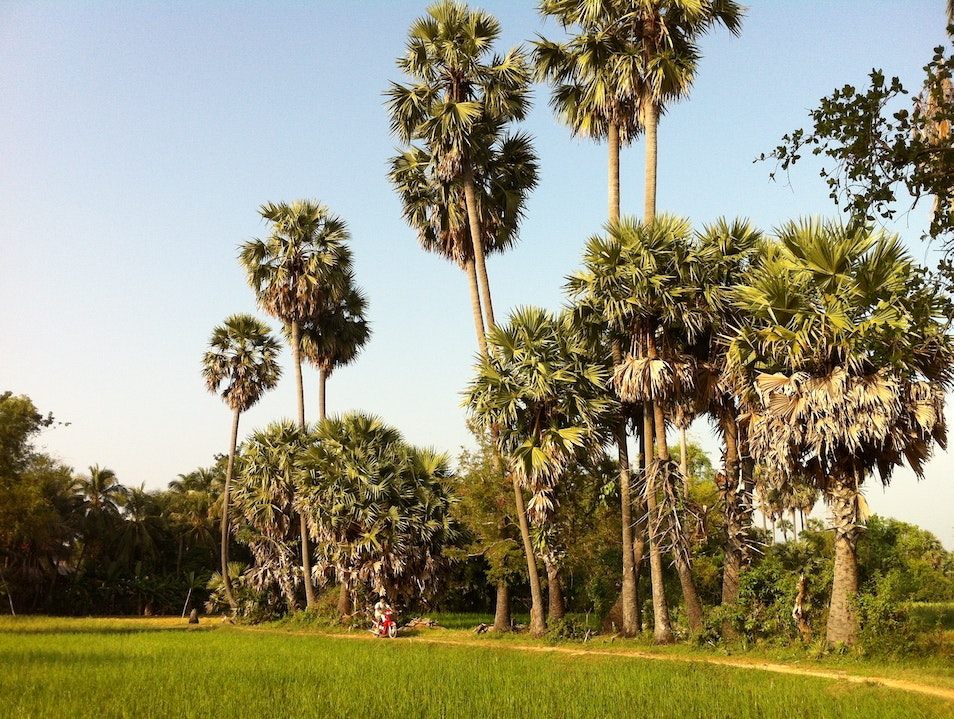Meet locals on a Treak Village Walk and Talk Siem Reap  Cambodia