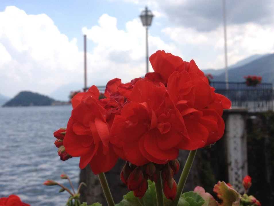 Lake Como Day Trip Varenna  Italy