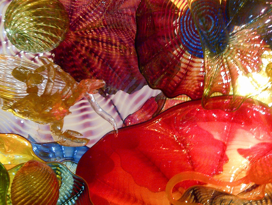 Chihuly: A Feast for the Eyes Saint Petersburg Florida United States